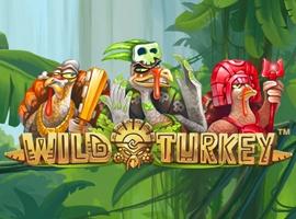 Wild Turkey Pokie Review