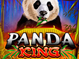 Our Testers Have Found Out Everything About the Panda King!