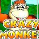 Crazy Monkey Slot: Recenzie Completă