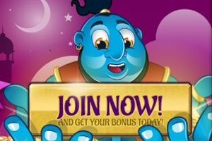 Wish Bingo Casino Bonuses and Promotional Offers