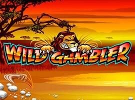 Wild Gambler online kostenlos spielen