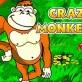 Crazy Monkey kostenlos online spielen