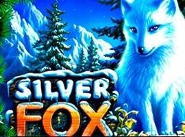 Silver Fox kostenlos online spielen