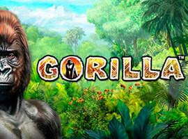 Gorilla Slot Merkmale